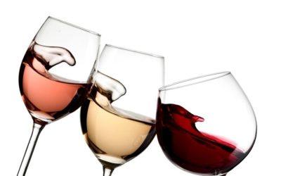 La vite e la cultura del vino – Il valore del tempo nel tempo